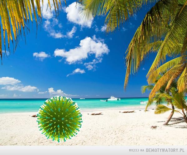 Ministerstwo Zdrowia:5300 nowych przypadków COVID-19.Tymczasem wirus grypy: –