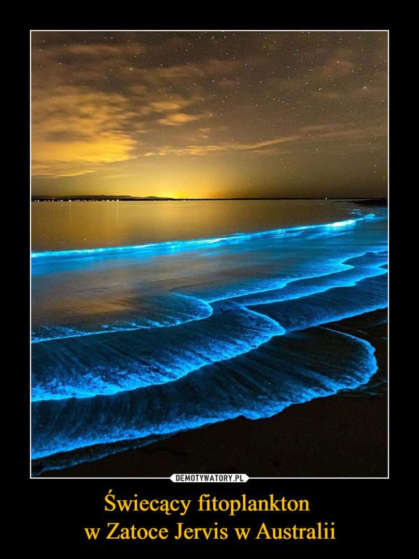 Świecący fitoplankton w Zatoce Jervis w Australii –