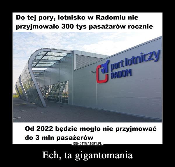 Ech, ta gigantomania –  Do tej pory lotnisko w Radomiu nie przyjmowało 300 tys pasażerów rocznie Od 2022 będzie mogło nie przyjmować do 3 mln pasażerów PORT LOTNICZY RADOM