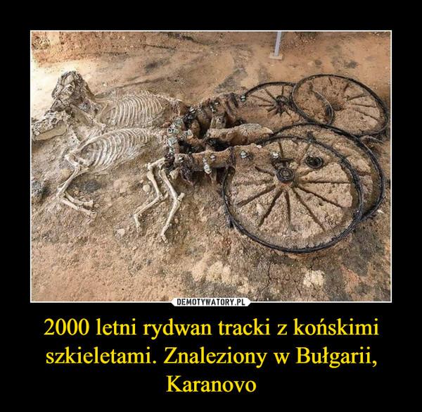 2000 letni rydwan tracki z końskimi szkieletami. Znaleziony w Bułgarii, Karanovo –
