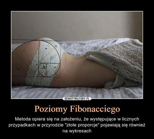 Poziomy Fibonacciego