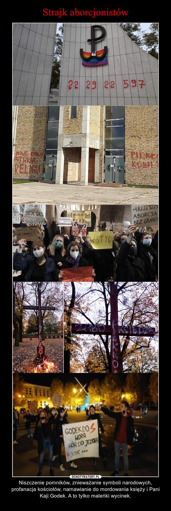 – Niszczenie pomników, znieważanie symboli narodowych, profanacja kościołów, namawianie do mordowania księży i Pani Kaji Godek. A to tylko maleńki wycinek.