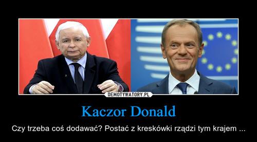 Kaczor Donald