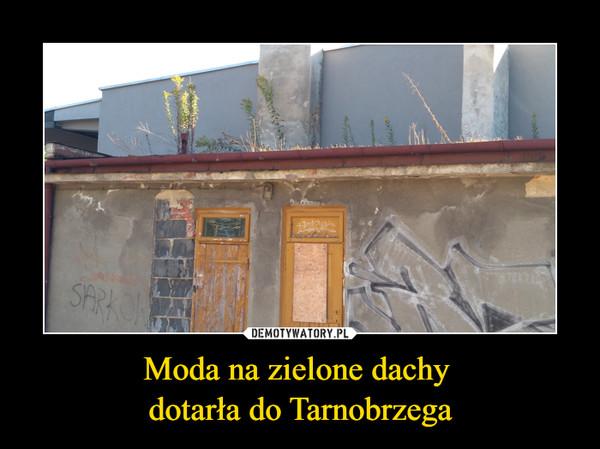 Moda na zielone dachy dotarła do Tarnobrzega –