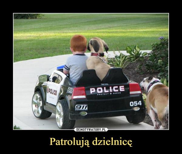 Patrolują dzielnicę –