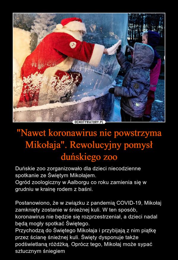 """""""Nawet koronawirus nie powstrzyma Mikołaja"""". Rewolucyjny pomysł duńskiego zoo – Duńskie zoo zorganizowało dla dzieci niecodzienne spotkanie ze Świętym Mikołajem.Ogród zoologiczny w Aalborgu co roku zamienia się w grudniu w krainę rodem z baśni. Postanowiono, że w związku z pandemią COVID-19, Mikołaj zamknięty zostanie w śnieżnej kuli. W ten sposób, koronawirus nie będzie się rozprzestrzeniał, a dzieci nadal będą mogły spotkać Świętego.Przychodzą do Świętego Mikołaja i przybijają z nim piątkę przez ścianę śnieżnej kuli. Święty dysponuje także podświetlaną różdżką. Oprócz tego, Mikołaj może sypać sztucznym śniegiem"""