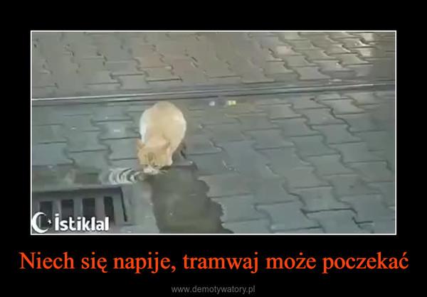 Niech się napije, tramwaj może poczekać –
