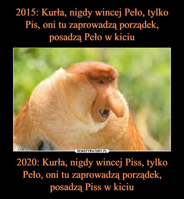 2020: Kurła, nigdy wincej Piss, tylko Peło, oni tu zaprowadzą porządek, posadzą Piss w kiciu –