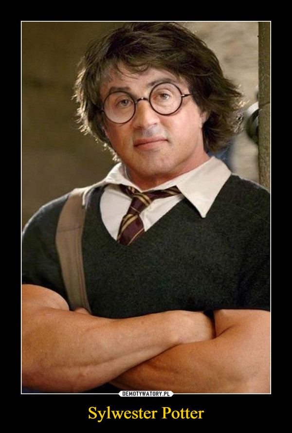 Sylwester Potter –