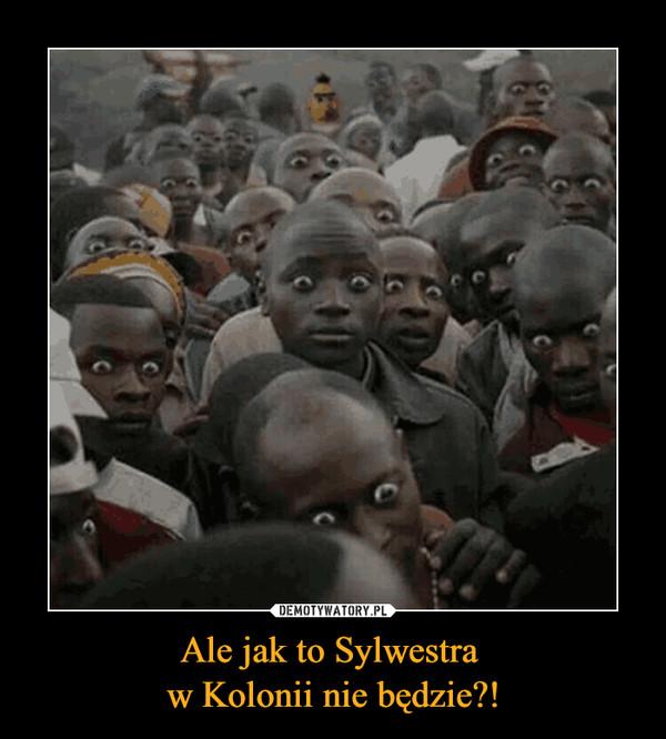 Ale jak to Sylwestra w Kolonii nie będzie?! –