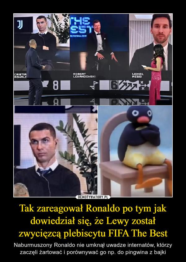Tak zareagował Ronaldo po tym jak dowiedział się, że Lewy został zwycięzcą plebiscytu FIFA The Best – Naburmuszony Ronaldo nie umknął uwadze internatów, którzy zaczęli żartować i porównywać go np. do pingwina z bajki