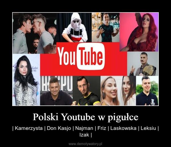 Polski Youtube w pigułce – | Kamerzysta | Don Kasjo | Najman | Friz | Laskowska | Leksiu | Izak |