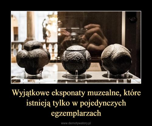 Wyjątkowe eksponaty muzealne, które istnieją tylko w pojedynczych egzemplarzach