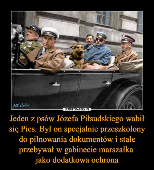 Jeden z psów Józefa Piłsudskiego wabił się Pies. Był on specjalnie przeszkolony do pilnowania dokumentów i stale przebywał w gabinecie marszałka  jako dodatkowa ochrona