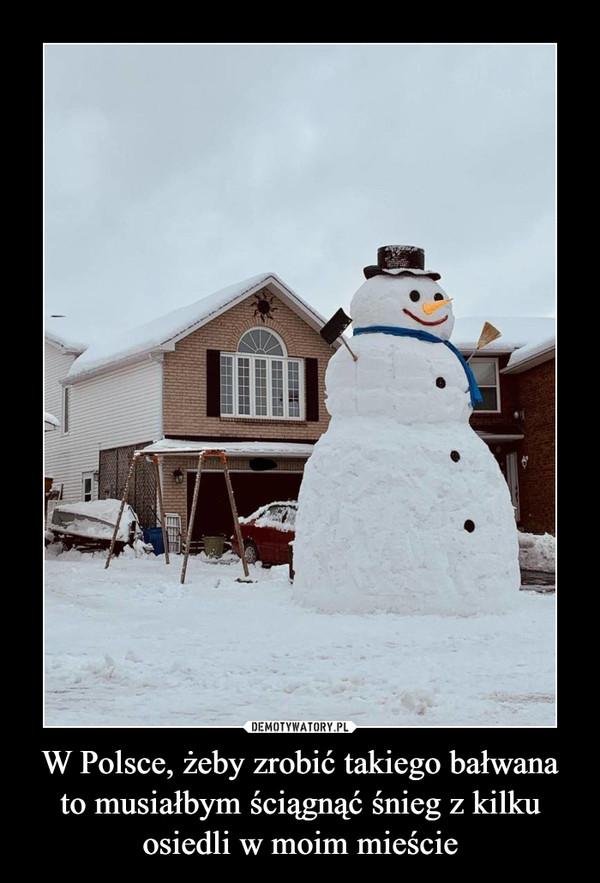 W Polsce, żeby zrobić takiego bałwana to musiałbym ściągnąć śnieg z kilku osiedli w moim mieście –
