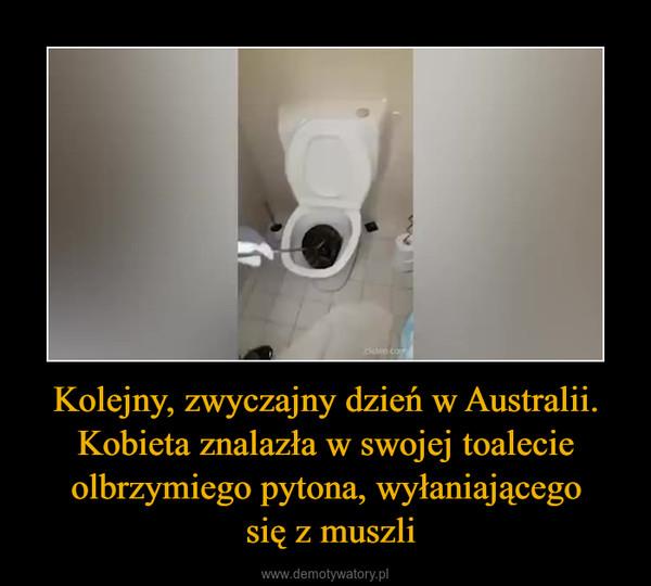 Kolejny, zwyczajny dzień w Australii. Kobieta znalazła w swojej toalecie olbrzymiego pytona, wyłaniającego się z muszli –