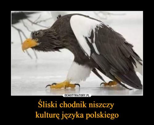 Śliski chodnik niszczy  kulturę języka polskiego
