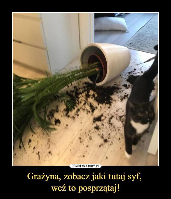 Grażyna, zobacz jaki tutaj syf, weź to posprzątaj! –