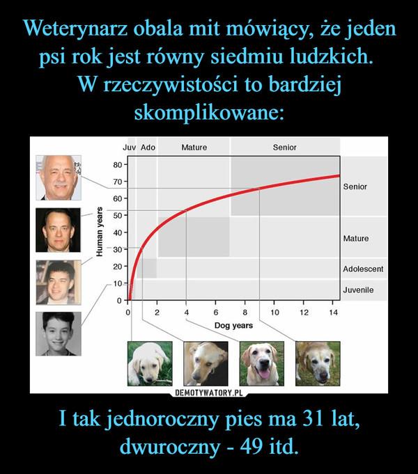 I tak jednoroczny pies ma 31 lat, dwuroczny - 49 itd. –