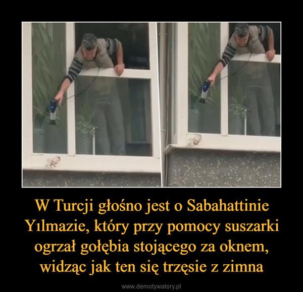 W Turcji głośno jest o Sabahattinie Yılmazie, który przy pomocy suszarki ogrzał gołębia stojącego za oknem, widząc jak ten się trzęsie z zimna –