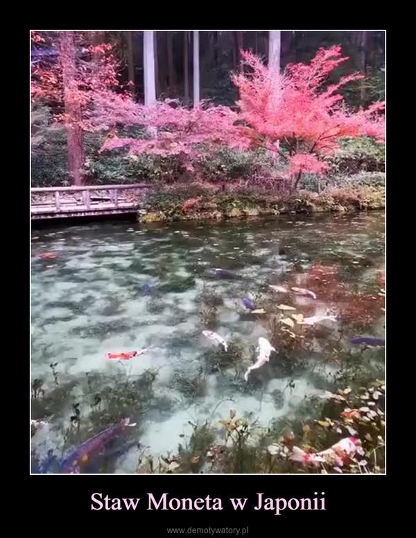 Staw Moneta w Japonii –