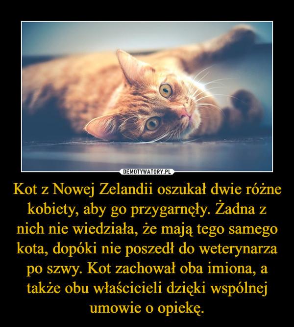 Kot z Nowej Zelandii oszukał dwie różne kobiety, aby go przygarnęły. Żadna z nich nie wiedziała, że mają tego samego kota, dopóki nie poszedł do weterynarza po szwy. Kot zachował oba imiona, a także obu właścicieli dzięki wspólnej umowie o opiekę. –