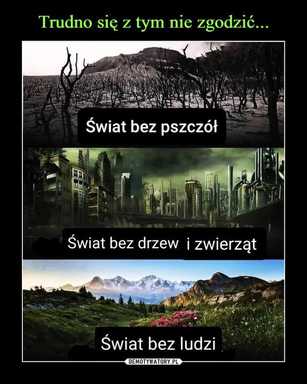 –  świat bez pszczółŚwiat bez drzew i zwierzątświat bez ludzi