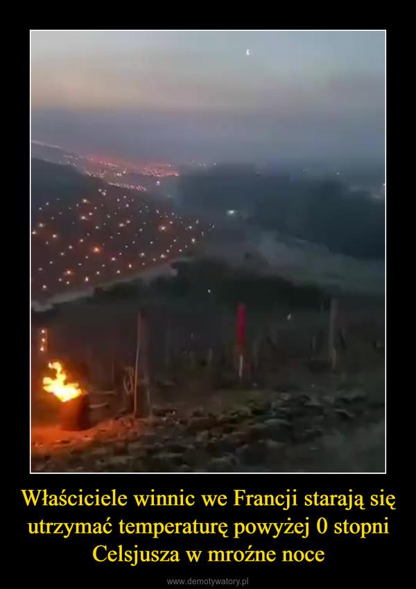 Właściciele winnic we Francji starają się utrzymać temperaturę powyżej 0 stopni Celsjusza w mroźne noce –