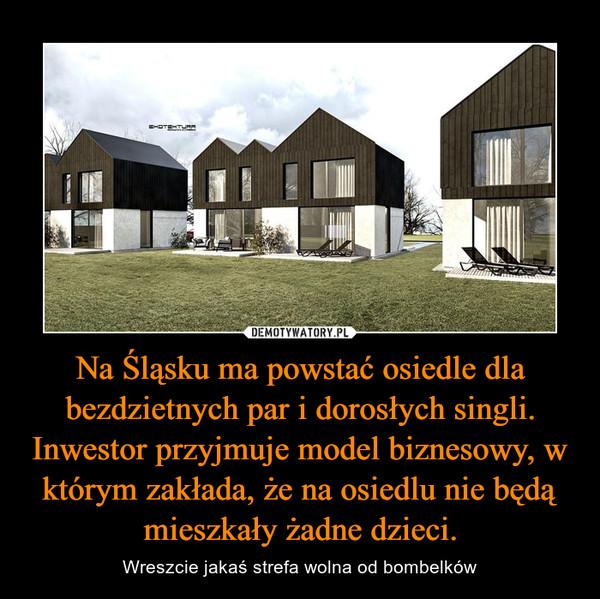Na Śląsku ma powstać osiedle dla bezdzietnych par i dorosłych singli. Inwestor przyjmuje model biznesowy, w którym zakłada, że na osiedlu nie będą mieszkały żadne dzieci.