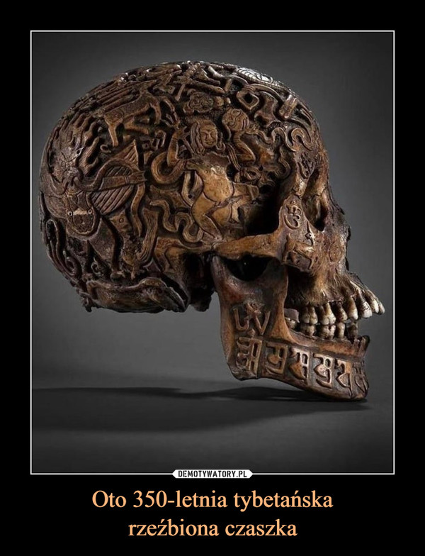 Oto 350-letnia tybetańskarzeźbiona czaszka –