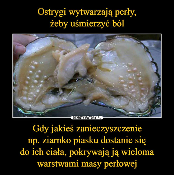 Gdy jakieś zanieczyszczenienp. ziarnko piasku dostanie siędo ich ciała, pokrywają ją wielomawarstwami masy perłowej –