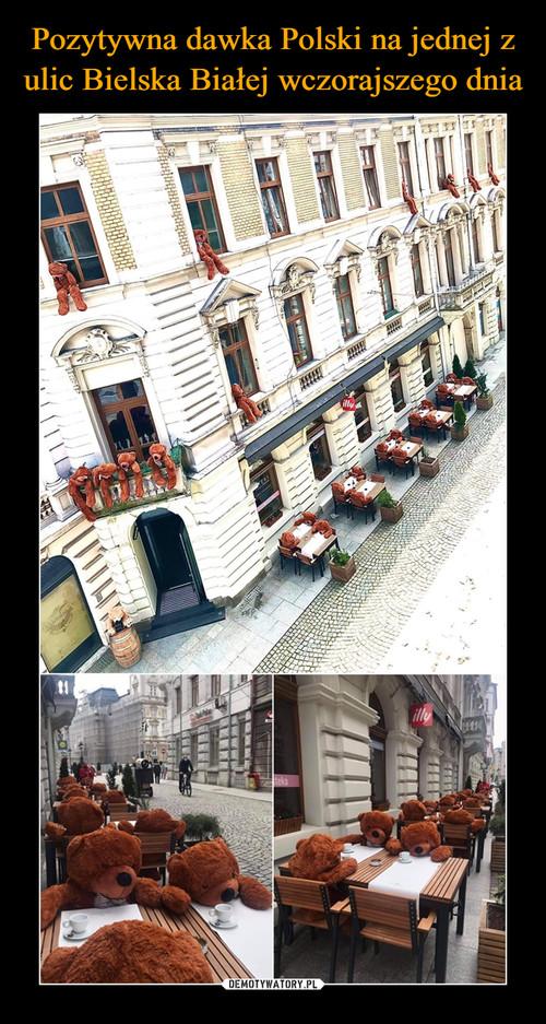 Pozytywna dawka Polski na jednej z ulic Bielska Białej wczorajszego dnia