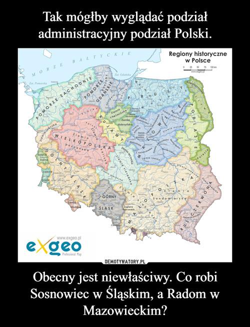 Tak mógłby wyglądać podział administracyjny podział Polski. Obecny jest niewłaściwy. Co robi Sosnowiec w Śląskim, a Radom w Mazowieckim?