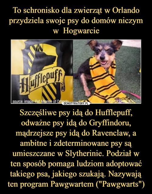 """To schronisko dla zwierząt w Orlando przydziela swoje psy do domów niczym w  Hogwarcie Szczęśliwe psy idą do Hufflepuff, odważne psy idą do Gryffindoru, mądrzejsze psy idą do Ravenclaw, a ambitne i zdeterminowane psy są umieszczane w Slytherinie. Podział w ten sposób pomaga ludziom adoptować takiego psa, jakiego szukają. Nazywają ten program Pawgwartem (""""Pawgwarts"""")"""