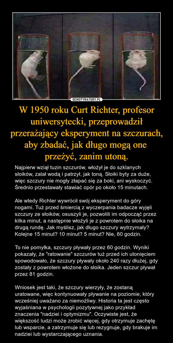 """W 1950 roku Curt Richter, profesor uniwersytecki, przeprowadził przerażający eksperyment na szczurach, aby zbadać, jak długo mogą one przeżyć, zanim utoną. – Najpierw wziął tuzin szczurów, włożył je do szklanych słoików, zalał wodą i patrzył, jak toną. Słoiki byty za duże, więc szczury nie mogły złapać się za boki, ani wyskoczyć. Średnio przestawały stawiać opór po około 15 minutach. Ale wtedy Richter wywrócił swój eksperyment do góry nogami. Tuż przed śmiercią z wyczerpania badacze wyjęli szczury ze słoików, osuszyli je, pozwolili im odpocząć przez kilka minut, a następnie włożyli je z powrotem do słoika na drugą rundę. Jak myślisz, jak długo szczury wytrzymały? Kolejne 15 minut? 10 minut? 5 minut? Nie, 60 godzin. To nie pomyłka, szczury pływały przez 60 godzin. Wyniki pokazały, że """"ratowanie"""" szczurów tuż przed ich utonięciem spowodowało, że szczury pływały około 240 razy dłużej, gdy zostały z powrotem włożone do słoika. Jeden szczur pływał przez 81 godzin. Wniosek jest taki, że szczury wierzyły, że zostaną uratowane, więc kontynuowały pływanie na poziomie, który wcześniej uważano za niemożliwy. Historia ta jest często wyjaśniana w psychologii pozytywnej jako przykład znaczenia """"nadziei i optymizmu"""". Oczywiste jest, że większość ludzi może zrobić więcej, gdy otrzymuje zachętę lub wsparcie, a zatrzymuje się lub rezygnuje, gdy brakuje im nadziei lub wystarczającego uznania."""