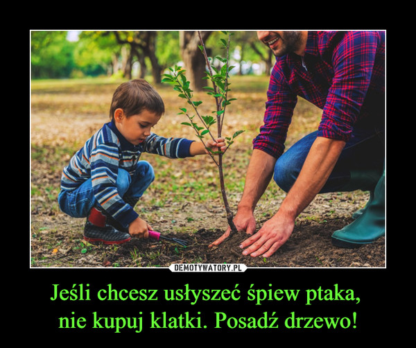 Jeśli chcesz usłyszeć śpiew ptaka, nie kupuj klatki. Posadź drzewo! –