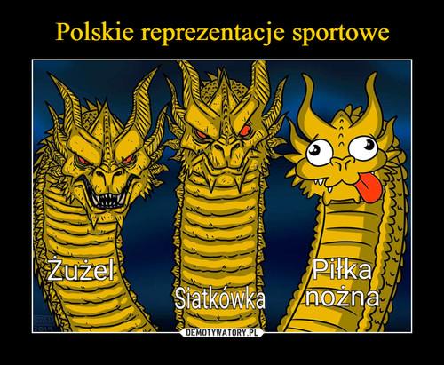 Polskie reprezentacje sportowe