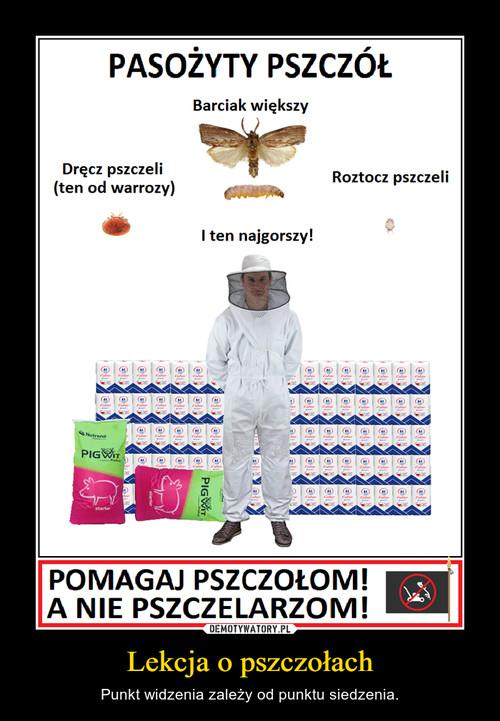 Lekcja o pszczołach