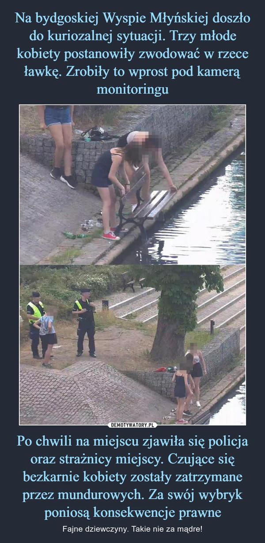 Po chwili na miejscu zjawiła się policja oraz strażnicy miejscy. Czujące się bezkarnie kobiety zostały zatrzymane przez mundurowych. Za swój wybryk poniosą konsekwencje prawne – Fajne dziewczyny. Takie nie za mądre!