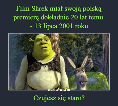 Film Shrek miał swoją polską premierę dokładnie 20 lat temu  - 13 lipca 2001 roku Czujesz się staro?