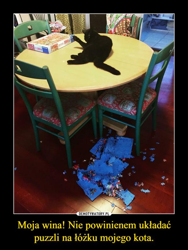 Moja wina! Nie powinienem układać puzzli na łóżku mojego kota. –