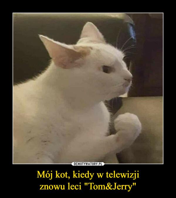 """Mój kot, kiedy w telewizjiznowu leci """"Tom&Jerry"""" –"""
