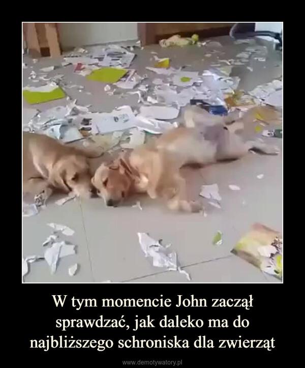 W tym momencie John zaczął sprawdzać, jak daleko ma do najbliższego schroniska dla zwierząt –