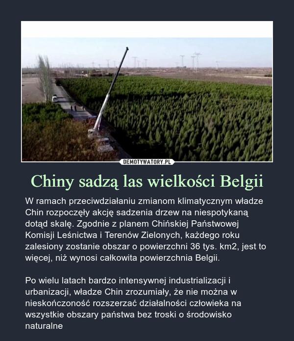 Chiny sadzą las wielkości Belgii – W ramach przeciwdziałaniu zmianom klimatycznym władze Chin rozpoczęły akcję sadzenia drzew na niespotykaną dotąd skalę. Zgodnie z planem Chińskiej Państwowej Komisji Leśnictwa i Terenów Zielonych, każdego roku zalesiony zostanie obszar o powierzchni 36 tys. km2, jest to więcej, niż wynosi całkowita powierzchnia Belgii.Po wielu latach bardzo intensywnej industrializacji i urbanizacji, władze Chin zrozumiały, że nie można w nieskończoność rozszerzać działalności człowieka na wszystkie obszary państwa bez troski o środowisko naturalne