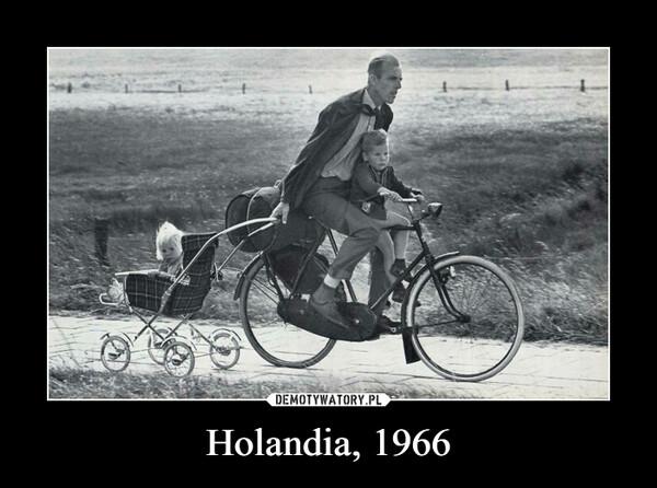 Holandia, 1966 –