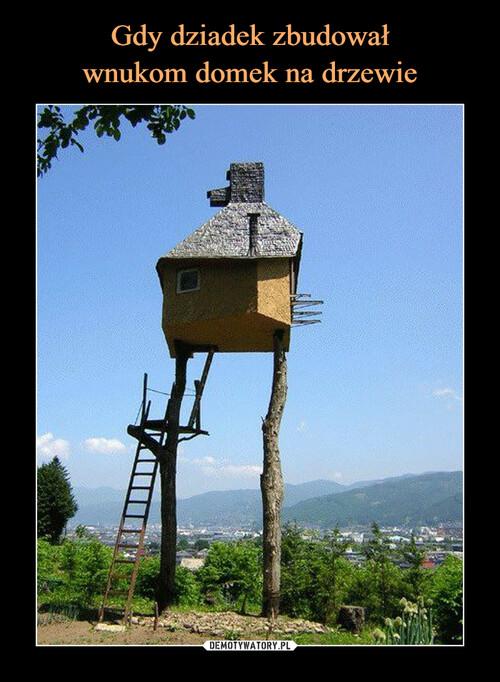 Gdy dziadek zbudował wnukom domek na drzewie