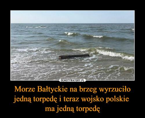 Morze Bałtyckie na brzeg wyrzuciło jedną torpedę i teraz wojsko polskie  ma jedną torpedę