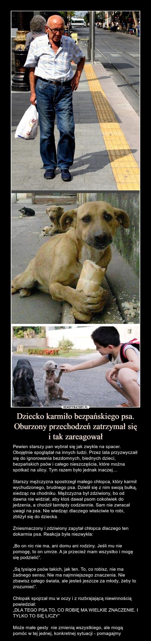 Dziecko karmiło bezpańskiego psa. Oburzony przechodzeń zatrzymał się i tak zareagował
