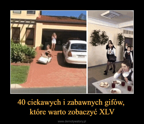 40 ciekawych i zabawnych gifów,  które warto zobaczyć XLV