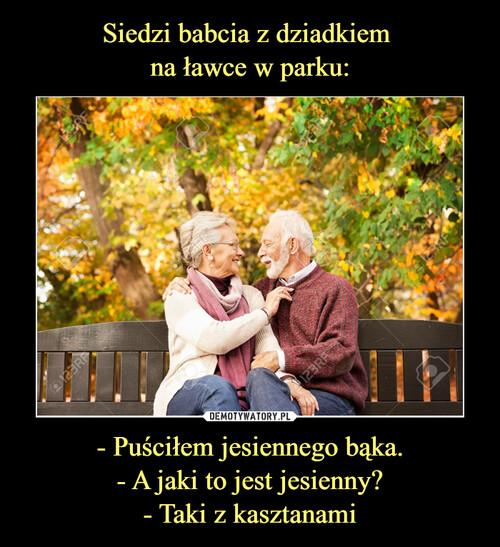 Siedzi babcia z dziadkiem  na ławce w parku: - Puściłem jesiennego bąka. - A jaki to jest jesienny? - Taki z kasztanami